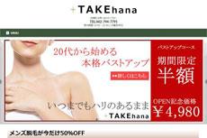 TAKEhana <タケハナ>のHP